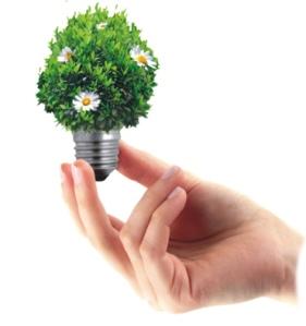 idea lightbulb green