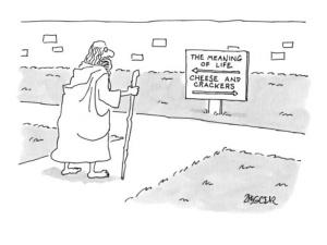 ny-er cartoon