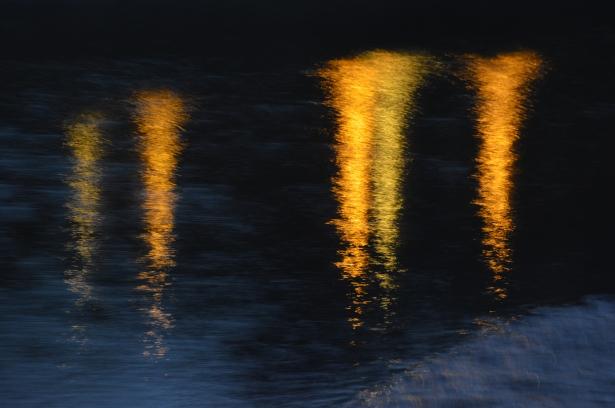 Tonias Reflection